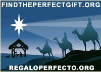 Christmas2010PerfectGiftG